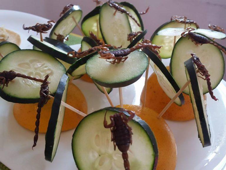 Insectos: menú gourmet para paladares sumamente exigentes