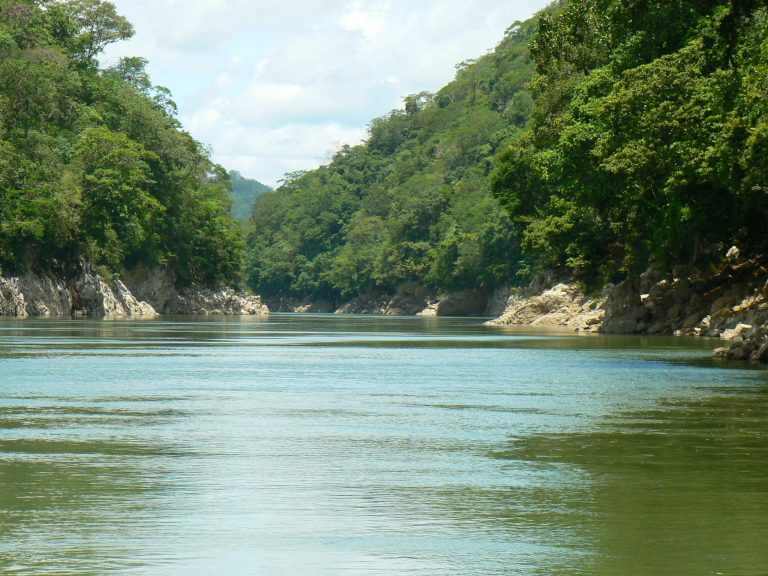 Conagua: participación de diferentes sectores para robustecer legislación hídrica